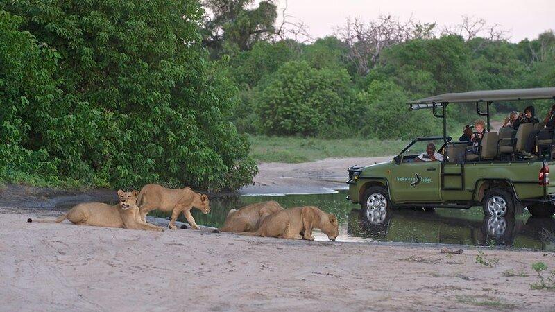 Botswana-Chobe-Chobe Bakwena Lodge8