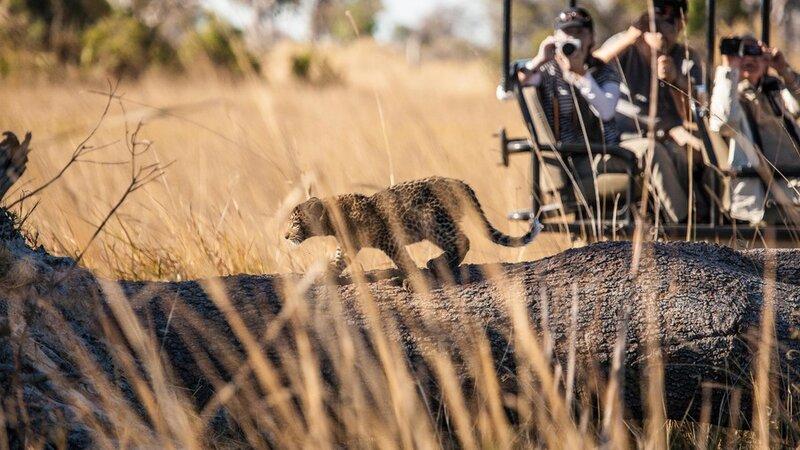 Botswana safari rondreis met de Victoria Falls
