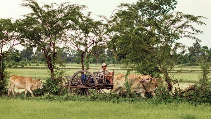 Cambodja-platteland-vespatour-siem-reap