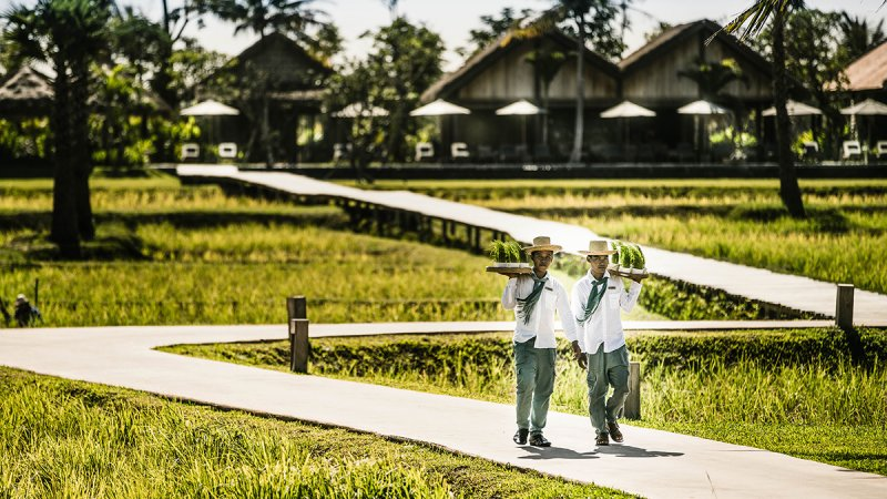Cambodja-Siem Reap-hotel-Phum Baitang-5