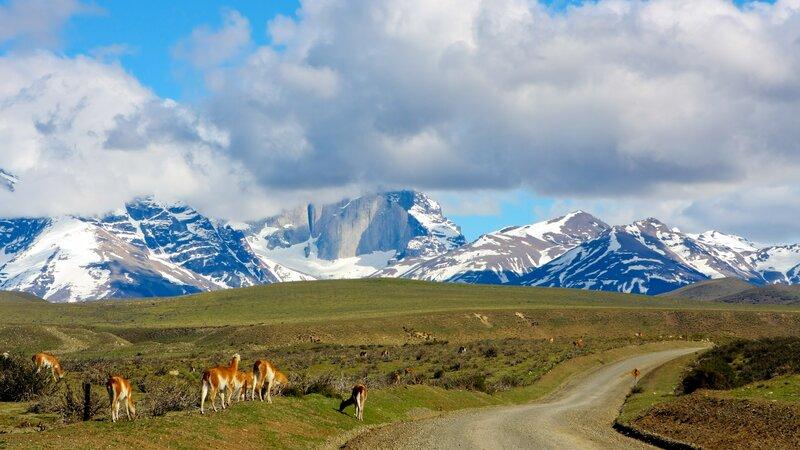 Chili - Torres Del Paine (2)