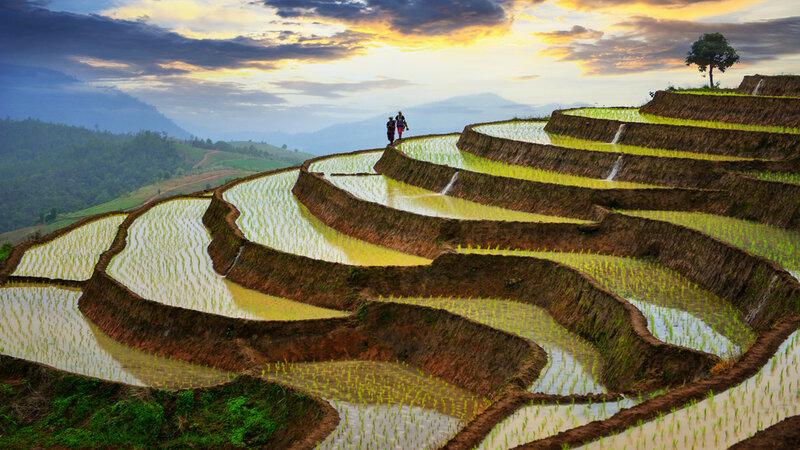 China-Yunnan-hoogtepunt-rijstterrassen
