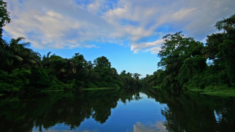 Costa Rica - Limón - Tortuguero - Manatus lodge (9)