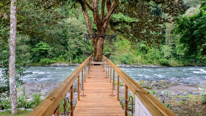 Costa-Rica-Pacuare-Hotel-Pacuare-Lodge-loopbrug