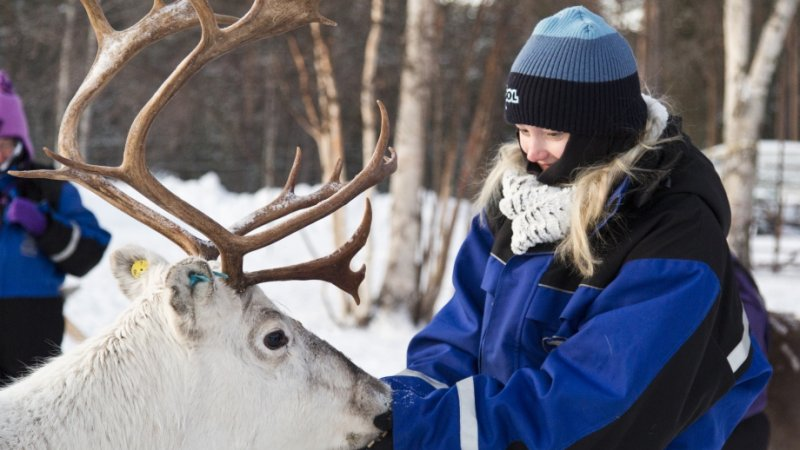 Amazing familiereis in Fins Lapland