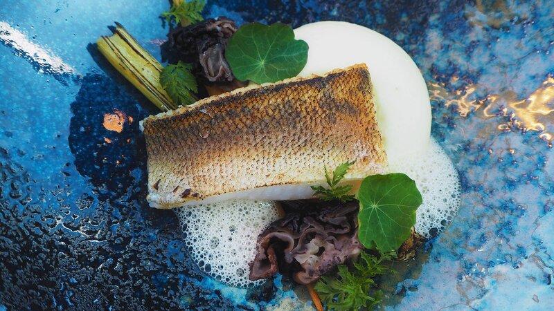 Finland-Lapland-Levi-levin-iglut-golden-crown-aurora-sky-restaurant-visgerecht