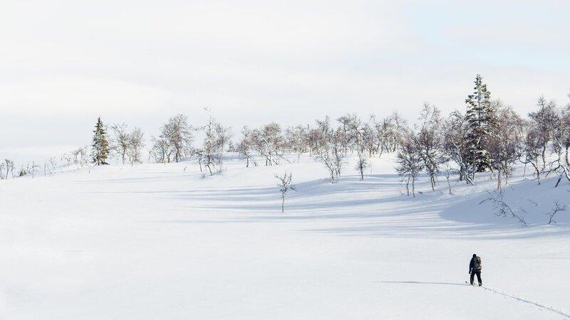 Finland-Zweden-Lapland-sneeuwschoen-wandelen 2