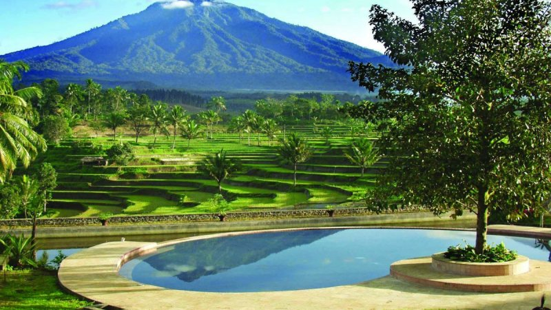 Indonesia-Tailor-made-holidays-Ijen-Resort_Pool-Gardens-View-1200x800