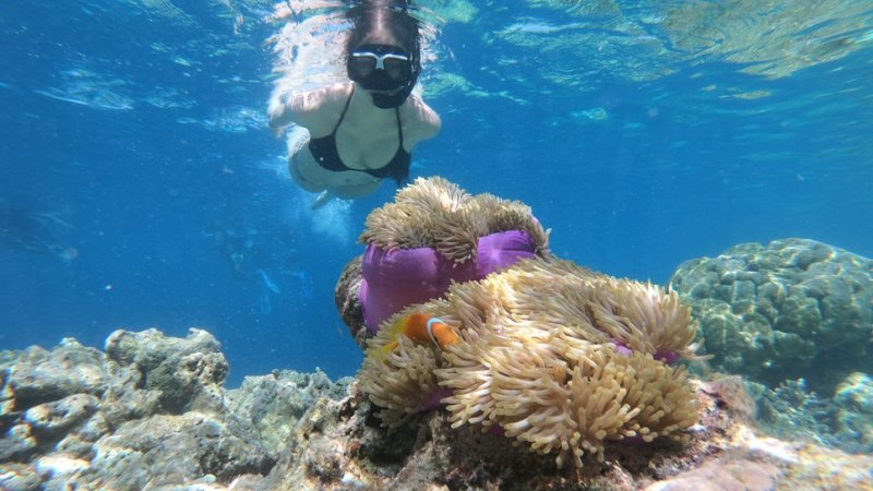 Indonesië-Nusa-Penida-Excursie-Snorkelen-aan-Crystal-Bay-3