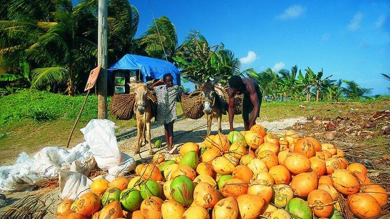 Jamaica - Port Antonio - Mockingbird Hill Hotel (32)