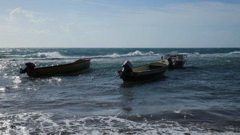 Jamaica - treasure Beach (6)