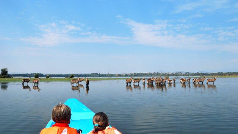 Kenia-Lake Naivasha-hoogtepunt