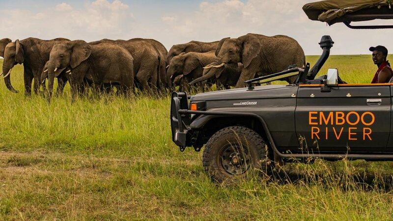 Kenia-Masai Mara-Emboo River Camp-safari olifanten-min