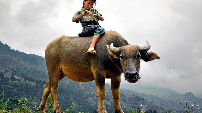 Amazing familiereis in Laos & Cambodja