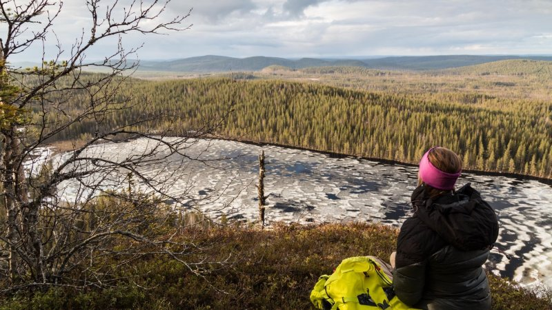 Lapland-Zweden-Harads-Loggers-Lodge-Hiking-Korgen-Nature-Reserve