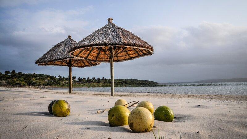 Mozambique-kokos en stranden