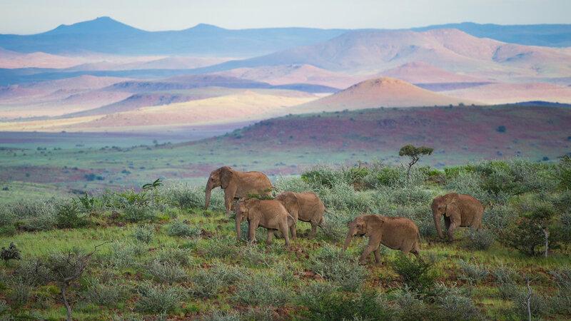 Namibië-Damaraland-hoogtepunt (4)