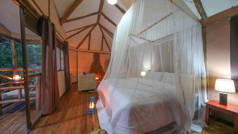 Oeganda-Bwindi Impenetrable Forest-Gorilla Safari Lodge (10)