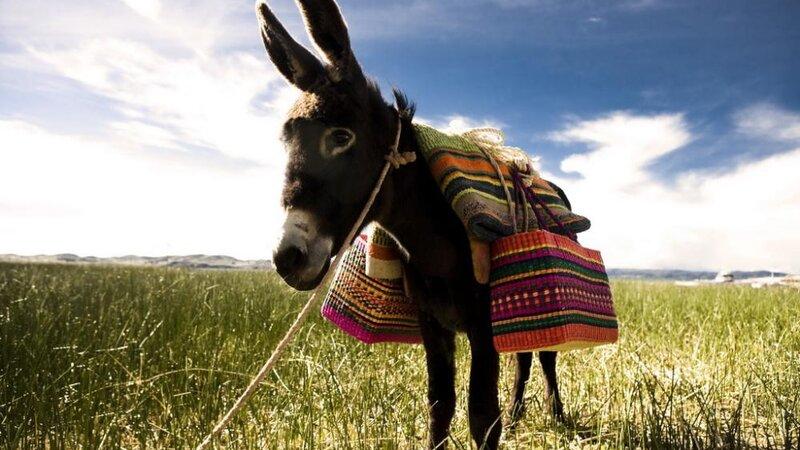 Peru - puno - titicaca - Titilaka lodge (22)