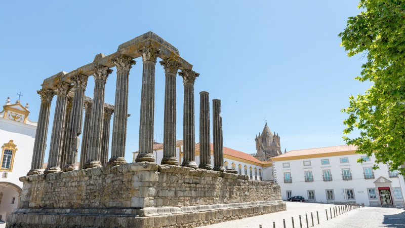 Portugal - Dianna Temple - Evora