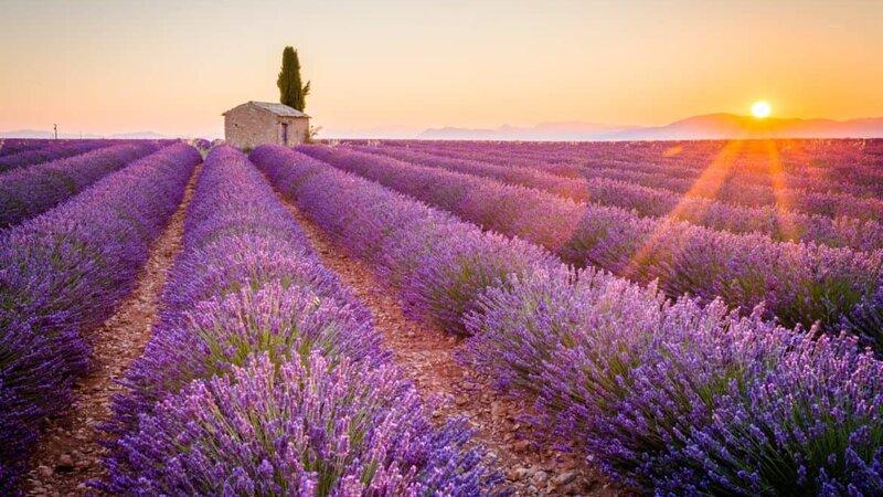 provence-frankrijk