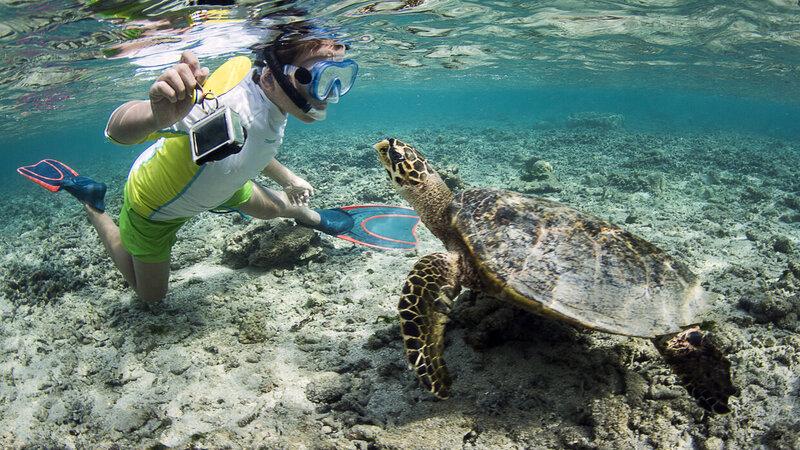 rsz_la-reunion-westkust-excursie-watersport-snorkelen-credit-irt-_cedric_peneau
