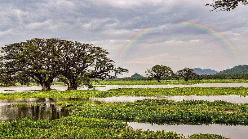 rsz_sri-lanka-gal-oya-national-park-excursie-bootsafari_4
