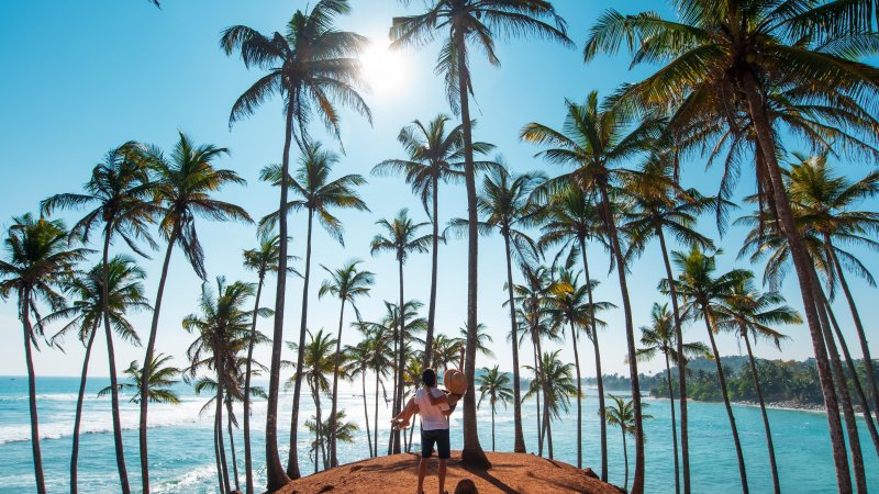 Amazing honeymoon in Sri Lanka