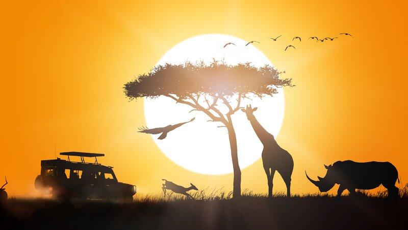 rsz_tanzania-katavi-excursie-night-game-drive_1