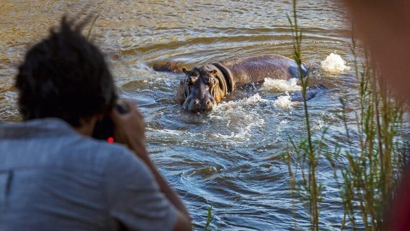 rsz_zuid-afrika-saint-lucia-excursie-hippo-crocodile-boattour-4