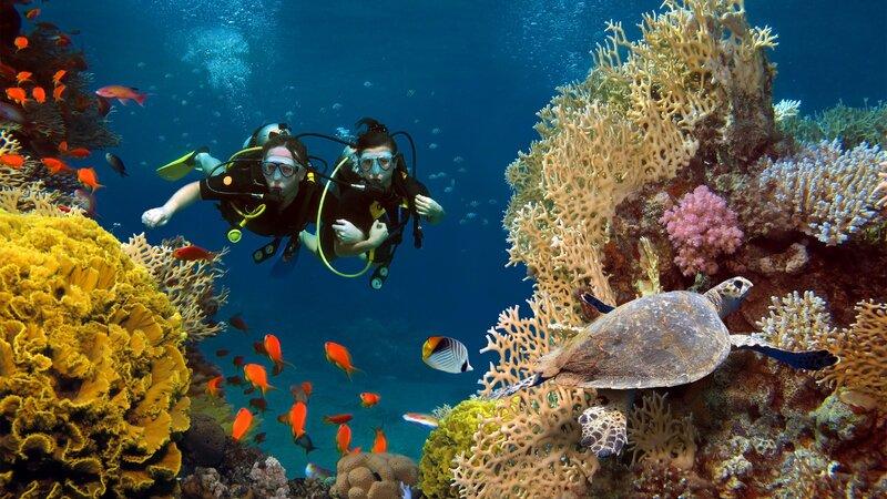 Eilandhoppen op de paradijselijke Seychellen