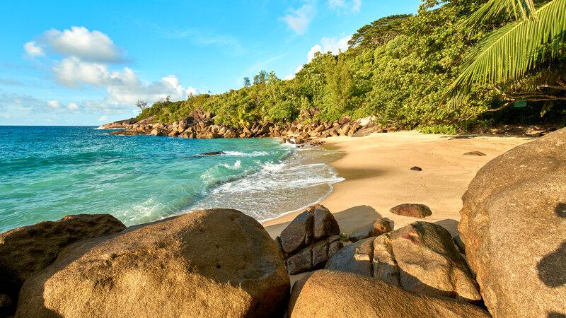 Seychellen-Mahé-Excursie-Anse-Major-nature-trail 3