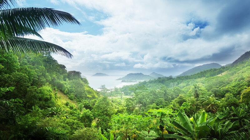 Seychellen-Mahé-natuur