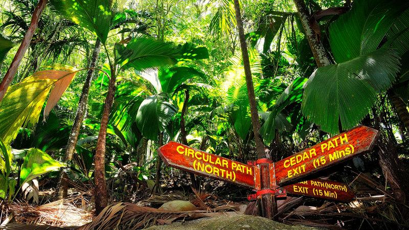 Seychellen-Praslin-Excursie-Vallee-de-Mai-3