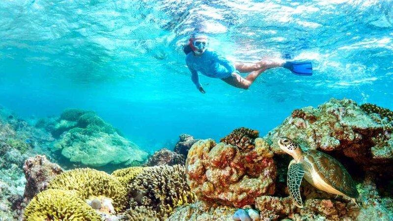 Seychellen-Private-eilanden-Alphonse-Island-snorkelen