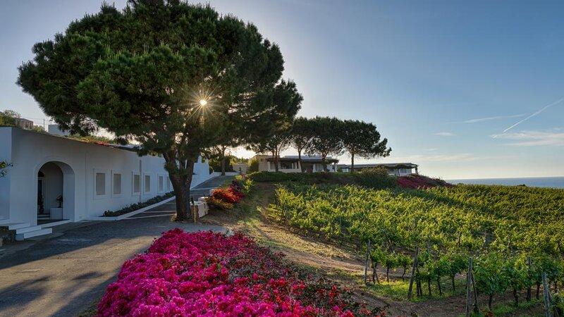 Sicilie-Eolische-Eilanden-Capofaro-Locanda-&-Malvasia-wijngaarden