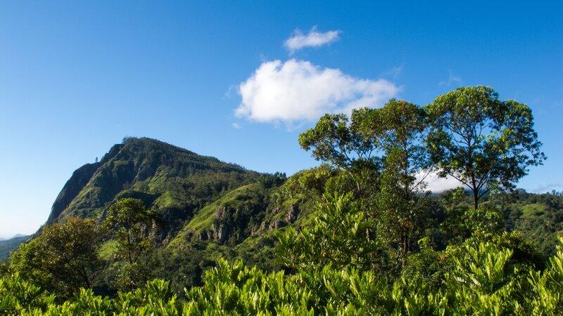 Sri Lanka-Ella-hoogtepunt-Little Adams Peak