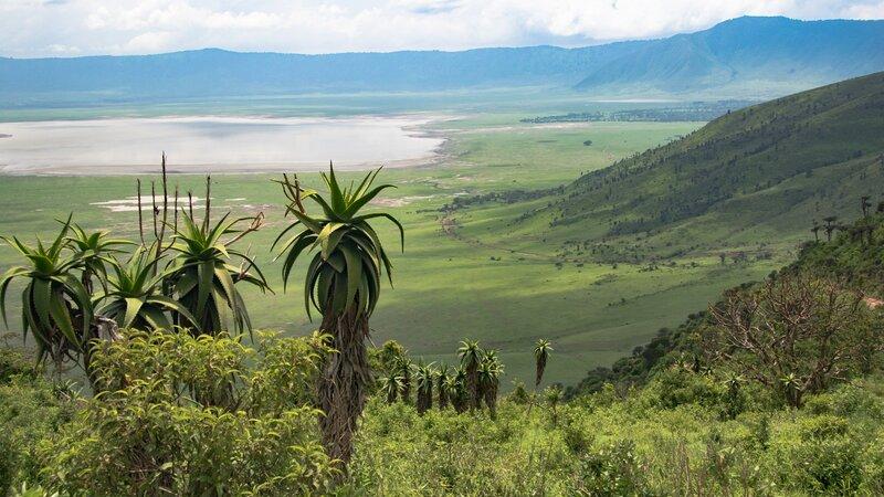 Tanzania-Ngorongoro krater