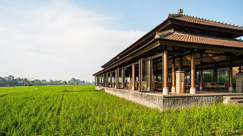 Ubud-Tanah-Gajah-romantisch-restaurant