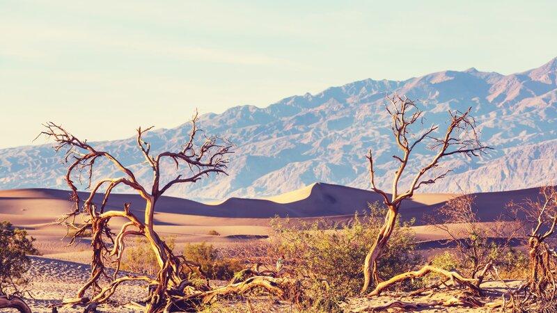 Verenigde staten - USA - VS - Californië - Death Valley National Park (6)