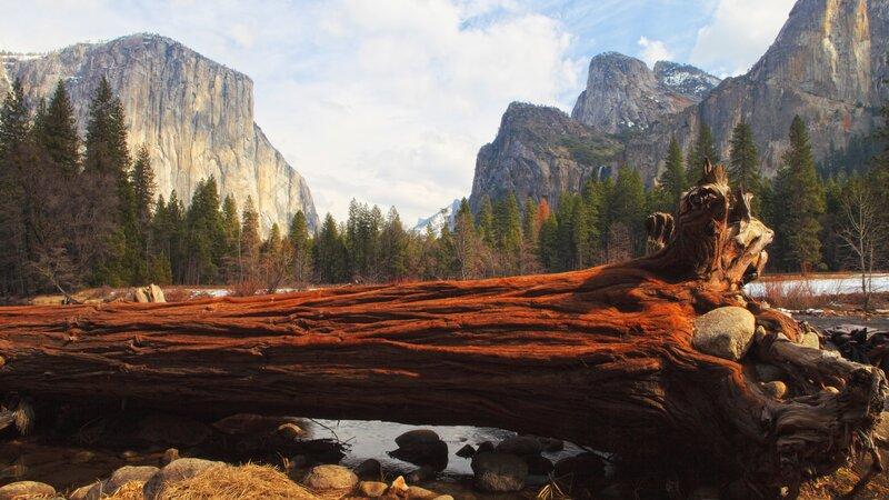 Verenigde staten - USA - VS - Californië -Yosemite National Park (5)
