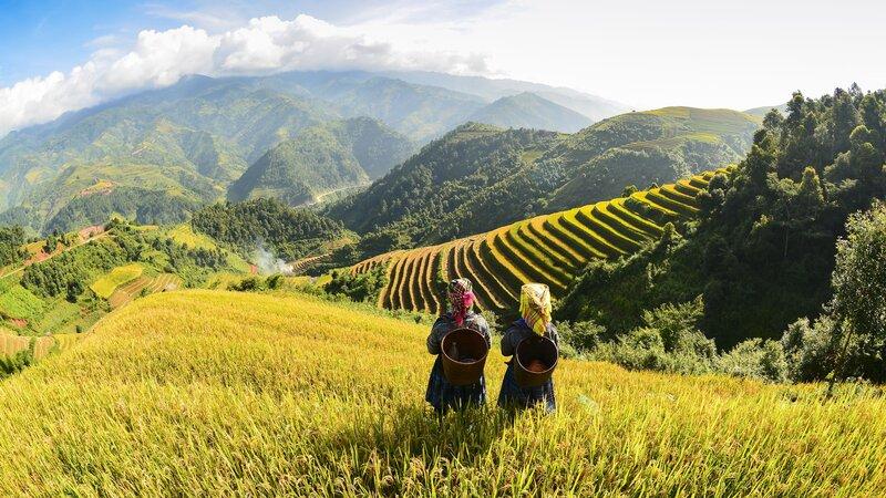 Vietnam-algemeen-rijstvelden en volk