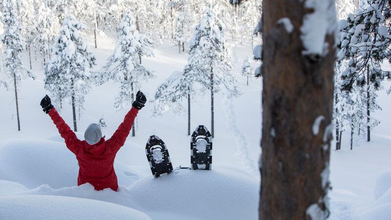 Amazing hideaway in Zweeds Lapland