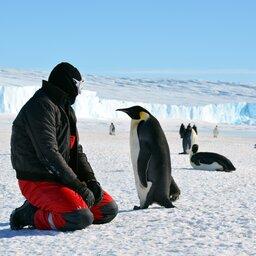 Antarctica (5)