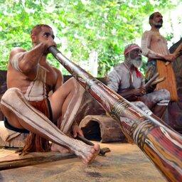 Australië - Yirrganydji -Aboriginal -didgeridoo -Queensland