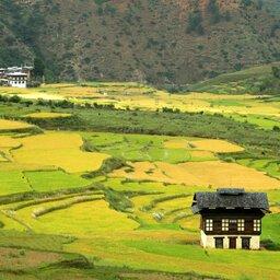 Bhutan-algemeen-groene vlaktes