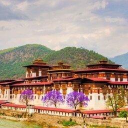 Bhutan-Phunaka-Hoogtepunt-Phunaka Dzong
