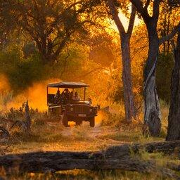 Botswana_Jeep