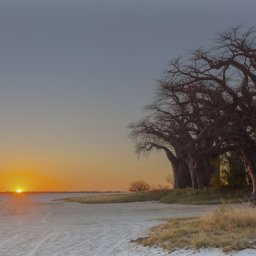 Botswana-Makgadikgadi zoutpannen (4)