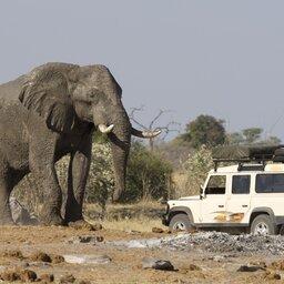 Botswana-shutterstock_Olifant Jeep